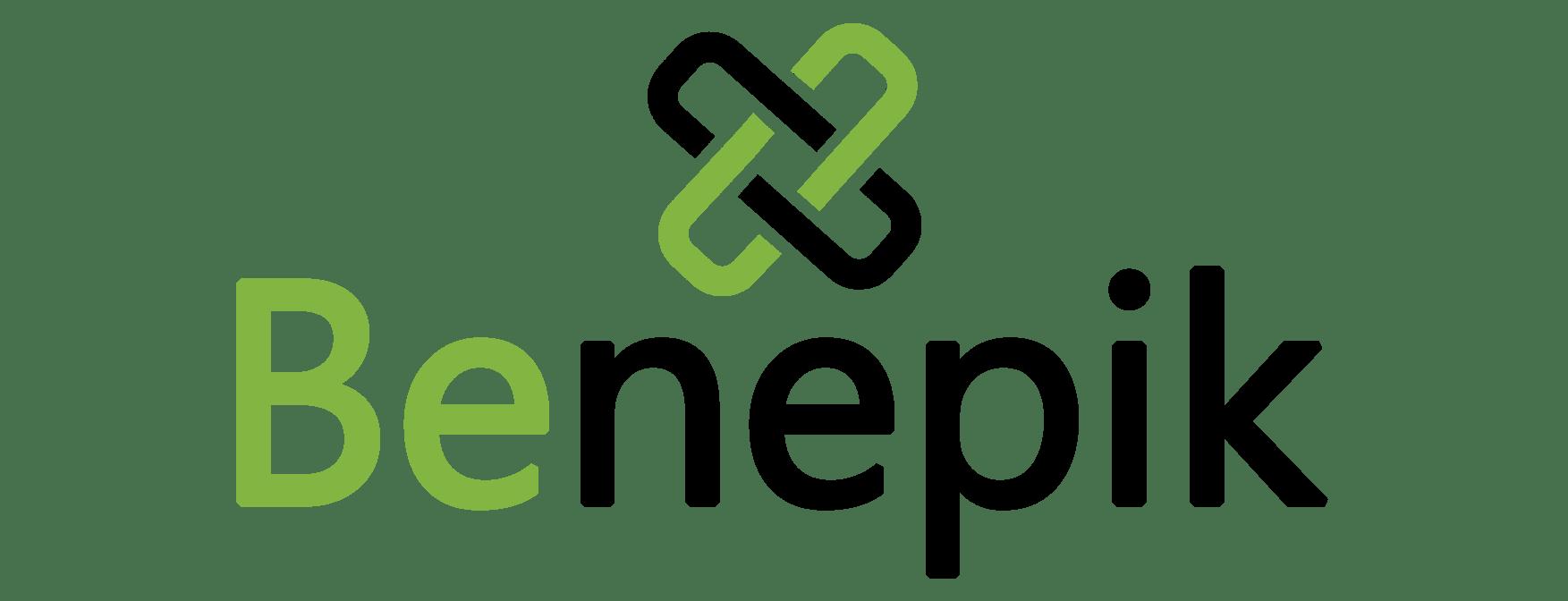 Benepik Technology Pvt. Ltd