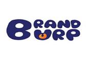 BrandBurpDigital Pvt Ltd.