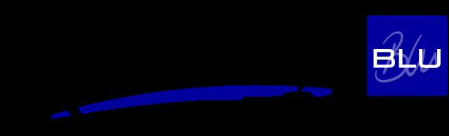 Redisson Blue Dwarka